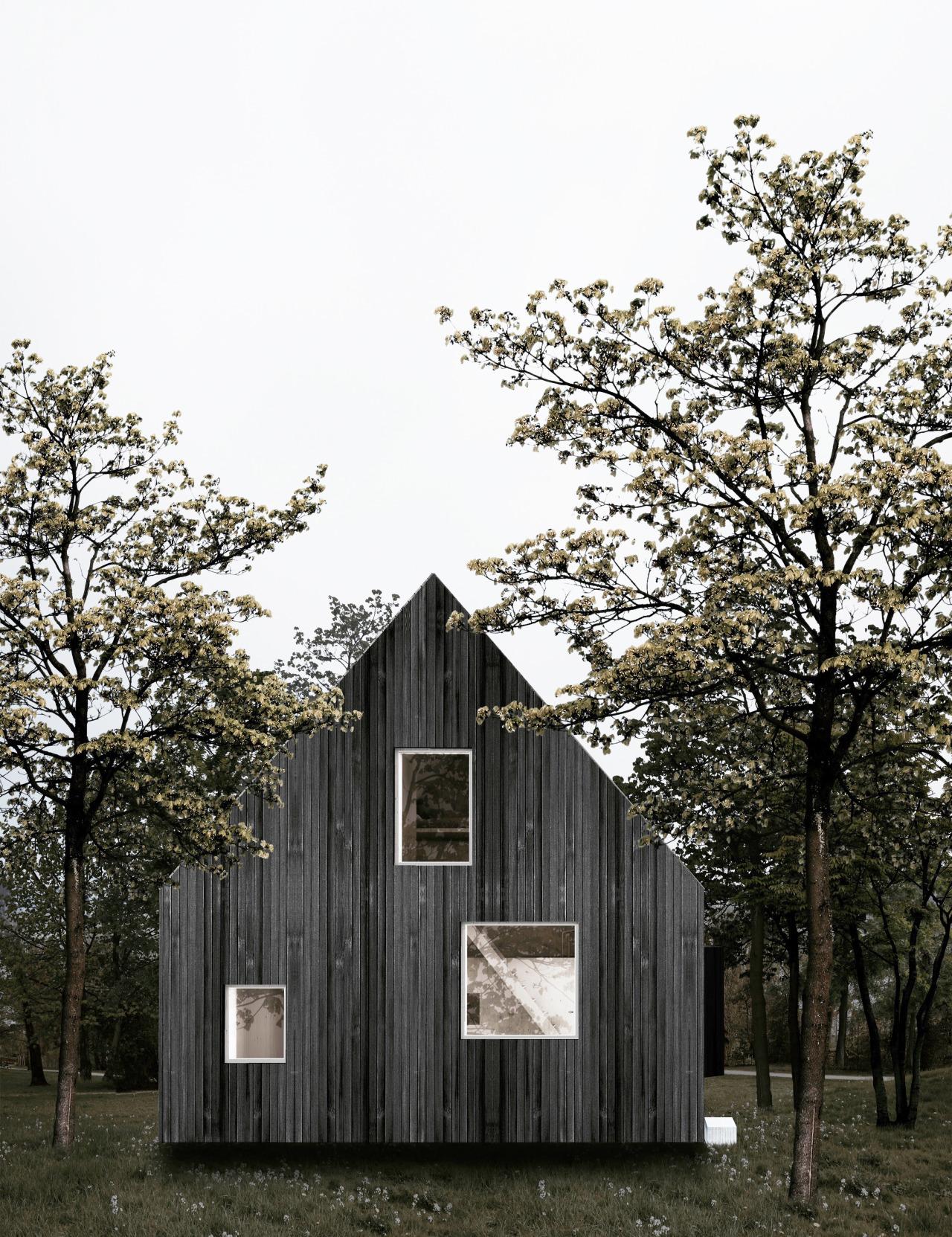 maison d'architecte en bois brûlé