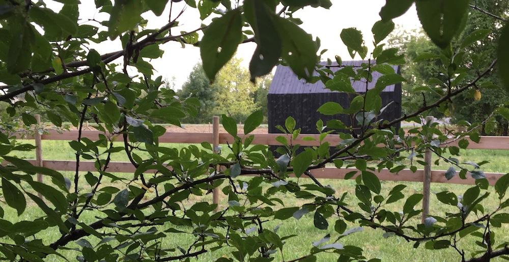 cabane de jardin ©BØISNØIR